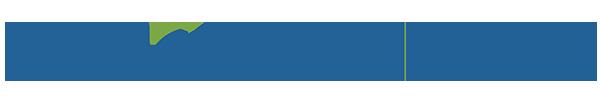 VI_Logo_ZWCAD 2020 main.png
